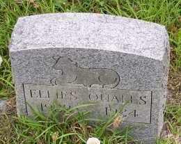 QUALLS, ELLIES - Montgomery County, Arkansas | ELLIES QUALLS - Arkansas Gravestone Photos