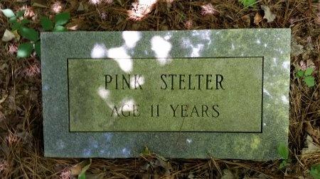 STELTER, PINK - Montgomery County, Arkansas   PINK STELTER - Arkansas Gravestone Photos