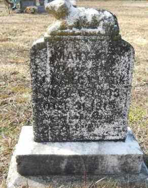 CLARK, MARY C - Nevada County, Arkansas | MARY C CLARK - Arkansas Gravestone Photos