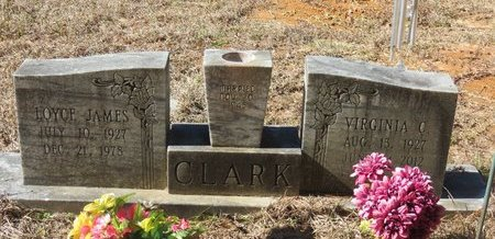 CLARK, LOYCE JAMES - Nevada County, Arkansas | LOYCE JAMES CLARK - Arkansas Gravestone Photos