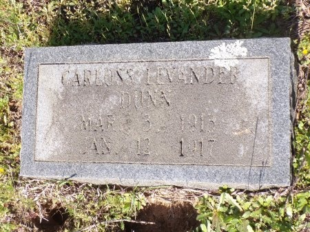 DUNN, CARLOSS LEVANDER - Nevada County, Arkansas | CARLOSS LEVANDER DUNN - Arkansas Gravestone Photos