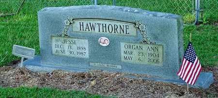 HAWTHORNE, ORGAN ANN - Nevada County, Arkansas | ORGAN ANN HAWTHORNE - Arkansas Gravestone Photos
