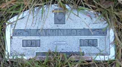 LOE, CALVIN - Nevada County, Arkansas   CALVIN LOE - Arkansas Gravestone Photos