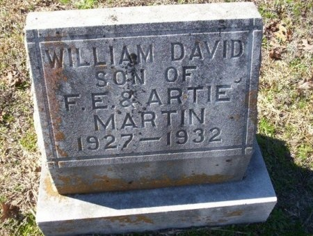 MARTIN, WILLIAM DAVID - Nevada County, Arkansas   WILLIAM DAVID MARTIN - Arkansas Gravestone Photos