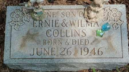 COLLINS, SON - Newton County, Arkansas | SON COLLINS - Arkansas Gravestone Photos