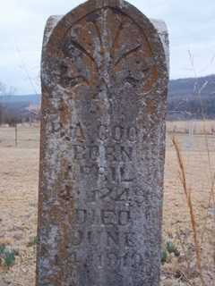 COOK, H. A. - Newton County, Arkansas | H. A. COOK - Arkansas Gravestone Photos