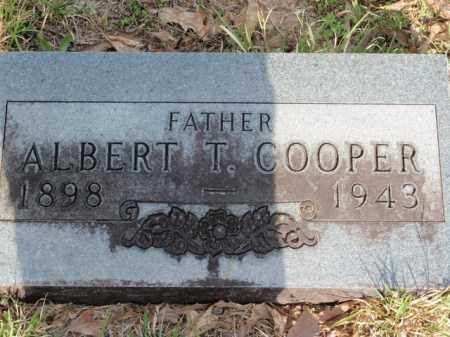COOPER, ALBERT T - Newton County, Arkansas | ALBERT T COOPER - Arkansas Gravestone Photos