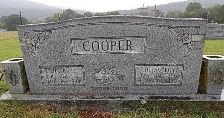 COOPER, LOUISE - Newton County, Arkansas | LOUISE COOPER - Arkansas Gravestone Photos