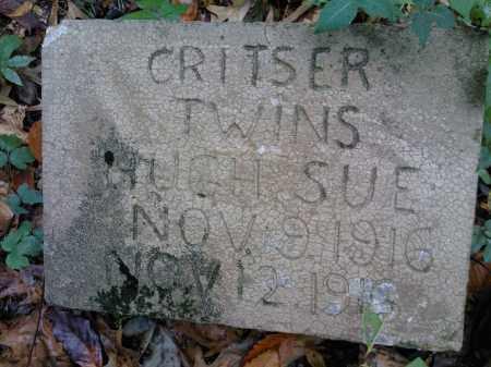 CRITSER, SUE - Newton County, Arkansas   SUE CRITSER - Arkansas Gravestone Photos