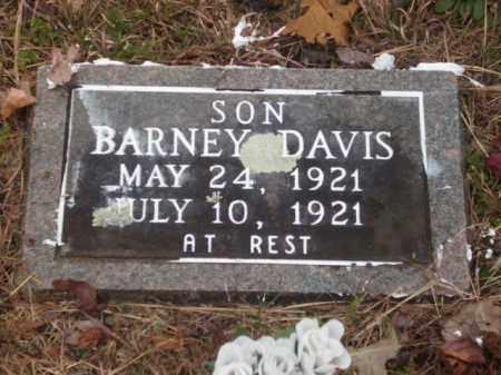 DAVIS, BARNEY - Newton County, Arkansas | BARNEY DAVIS - Arkansas Gravestone Photos