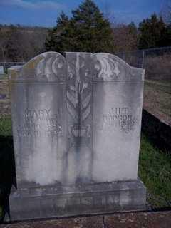 DODSON, MARY J. - Newton County, Arkansas | MARY J. DODSON - Arkansas Gravestone Photos