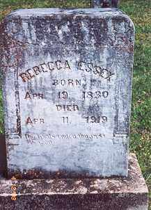 WOODWARD ESSEX, REBECCA ELIZABETH - Newton County, Arkansas | REBECCA ELIZABETH WOODWARD ESSEX - Arkansas Gravestone Photos