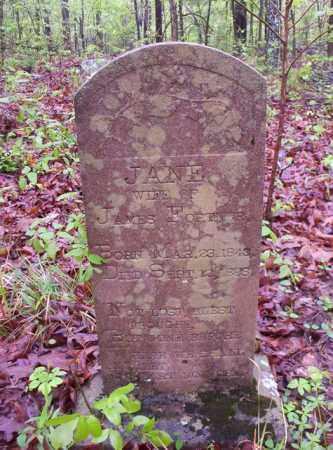 FORTNER, JANE - Newton County, Arkansas | JANE FORTNER - Arkansas Gravestone Photos