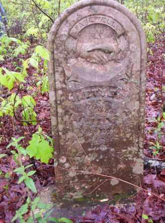 BURNS HALE, NETYE - Newton County, Arkansas | NETYE BURNS HALE - Arkansas Gravestone Photos