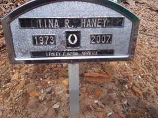 HANEY, TINA R. - Newton County, Arkansas | TINA R. HANEY - Arkansas Gravestone Photos