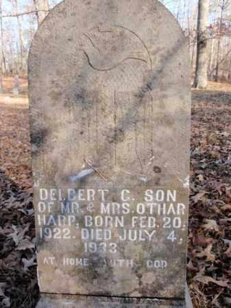 HARP, DELBERT G. - Newton County, Arkansas | DELBERT G. HARP - Arkansas Gravestone Photos