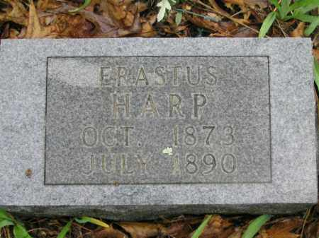 HARP, ERASTUS - Newton County, Arkansas | ERASTUS HARP - Arkansas Gravestone Photos