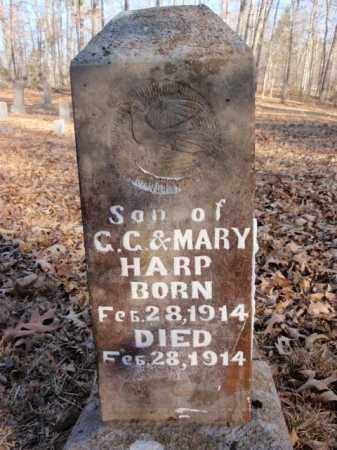 HARP, SON - Newton County, Arkansas | SON HARP - Arkansas Gravestone Photos
