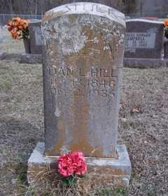 HILL, DAN L. - Newton County, Arkansas | DAN L. HILL - Arkansas Gravestone Photos