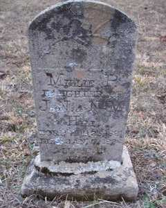 HILL, MILLIE PRICE - Newton County, Arkansas | MILLIE PRICE HILL - Arkansas Gravestone Photos