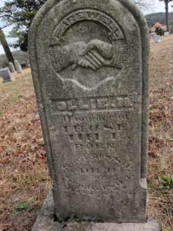HILL, OLLIE N. - Newton County, Arkansas | OLLIE N. HILL - Arkansas Gravestone Photos