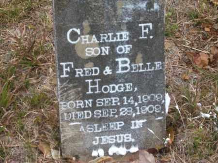 HODGE, CHARLIE F. - Newton County, Arkansas | CHARLIE F. HODGE - Arkansas Gravestone Photos