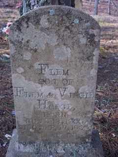HODGE, FLEM - Newton County, Arkansas | FLEM HODGE - Arkansas Gravestone Photos