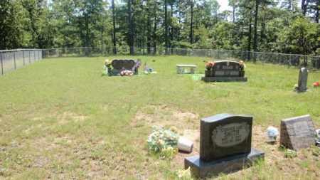 RUSH, CHILDREN - Newton County, Arkansas | CHILDREN RUSH - Arkansas Gravestone Photos