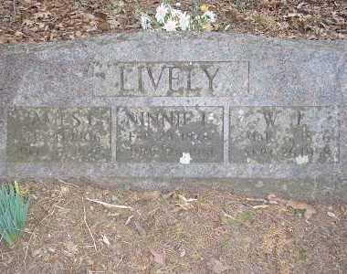 LIVELY, JAMES COLEMAN - Newton County, Arkansas | JAMES COLEMAN LIVELY - Arkansas Gravestone Photos