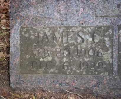 LIVELY, JAMES COLEMAN (CLOSEUP) - Newton County, Arkansas   JAMES COLEMAN (CLOSEUP) LIVELY - Arkansas Gravestone Photos