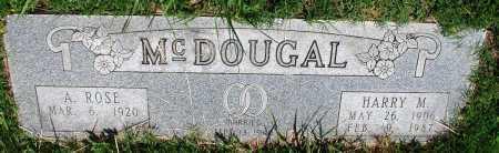 MCDOUGAL, HARRY M - Newton County, Arkansas   HARRY M MCDOUGAL - Arkansas Gravestone Photos