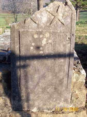 NEWBERRY  (2), C. B. - Newton County, Arkansas | C. B. NEWBERRY  (2) - Arkansas Gravestone Photos
