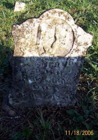NEWBERRY, STEPHEN CHAMBERS - Newton County, Arkansas | STEPHEN CHAMBERS NEWBERRY - Arkansas Gravestone Photos