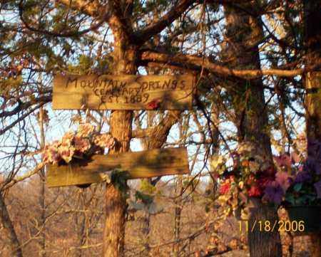 POTTER, MARY E. - Newton County, Arkansas | MARY E. POTTER - Arkansas Gravestone Photos