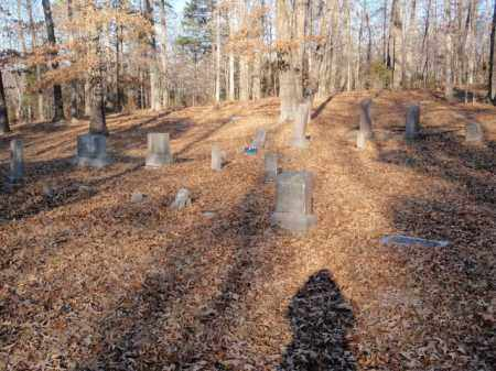 *OVERVIEW,  - Newton County, Arkansas    *OVERVIEW - Arkansas Gravestone Photos
