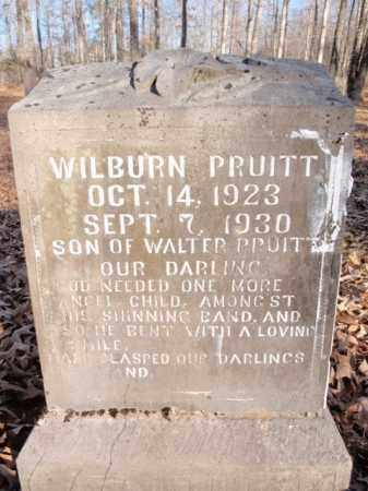 PRUITT, WILBURN - Newton County, Arkansas | WILBURN PRUITT - Arkansas Gravestone Photos