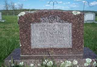 REYNOLDS, STEPHEN LEE - Newton County, Arkansas | STEPHEN LEE REYNOLDS - Arkansas Gravestone Photos