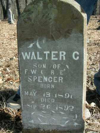SPENCER, WALTER C. - Newton County, Arkansas | WALTER C. SPENCER - Arkansas Gravestone Photos