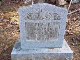 STANDRIDGE, BEA B - Newton County, Arkansas | BEA B STANDRIDGE - Arkansas Gravestone Photos