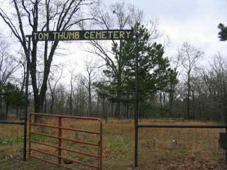 *TOM THUMB CEMETERY GATE,  - Newton County, Arkansas |  *TOM THUMB CEMETERY GATE - Arkansas Gravestone Photos