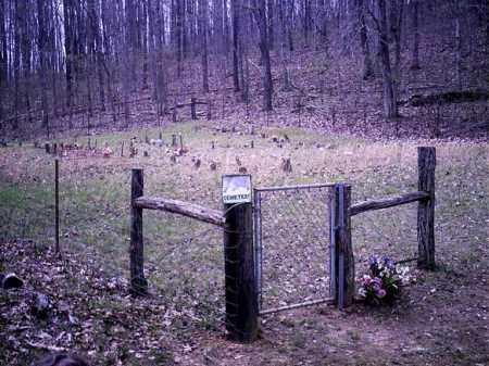 WILLIS, A J - Newton County, Arkansas | A J WILLIS - Arkansas Gravestone Photos
