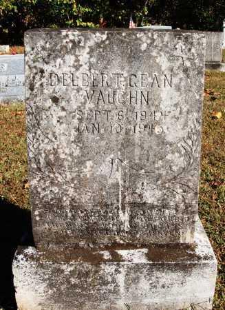 VAUGHN, DELBERT GEAN - Newton County, Arkansas | DELBERT GEAN VAUGHN - Arkansas Gravestone Photos