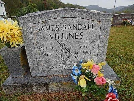 VILLINES, JAMES RANDALL - Newton County, Arkansas | JAMES RANDALL VILLINES - Arkansas Gravestone Photos