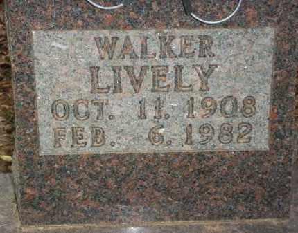 LIVELY, RICHARD WALKER - Newton County, Arkansas | RICHARD WALKER LIVELY - Arkansas Gravestone Photos