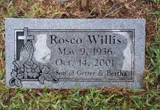 WILLIS, ROSCO - Newton County, Arkansas | ROSCO WILLIS - Arkansas Gravestone Photos