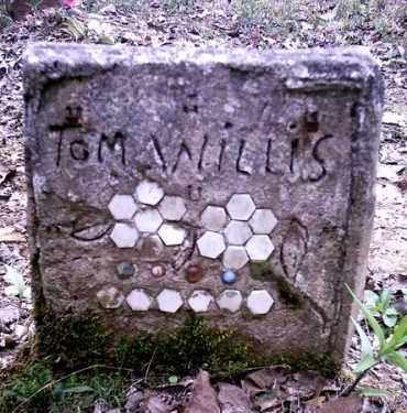 WILLIS, TOM - Newton County, Arkansas | TOM WILLIS - Arkansas Gravestone Photos