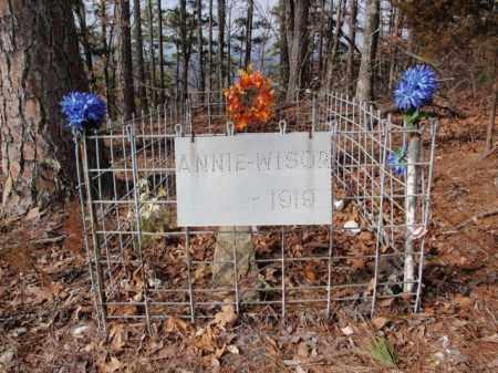 WISOR, ANNIE - Newton County, Arkansas | ANNIE WISOR - Arkansas Gravestone Photos
