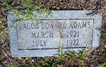 ADAMS, JACOB EDWARD - Ouachita County, Arkansas | JACOB EDWARD ADAMS - Arkansas Gravestone Photos
