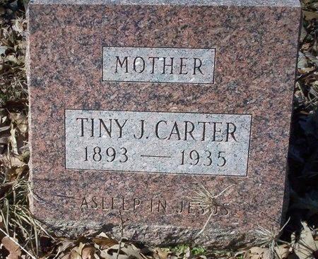 CARTER, TINY J - Ouachita County, Arkansas | TINY J CARTER - Arkansas Gravestone Photos