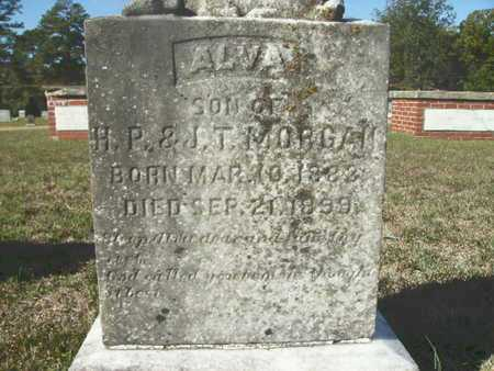 MORGAN, ALVA - Ouachita County, Arkansas | ALVA MORGAN - Arkansas Gravestone Photos